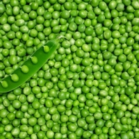 Dry And Fresh Green Peas
