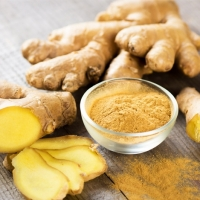 High Quality Fresh Organic Ginger