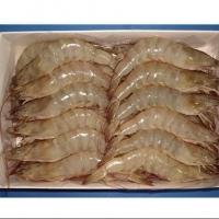 Frozen White Vannamei, Black Tiger Shrimps