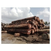 Lumber Suppliers Manufacturers Wholesalers And Traders