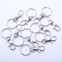 Snap Ring Metal Keychain